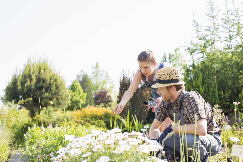 5+1 nagyszerű DIY kerti ötlet