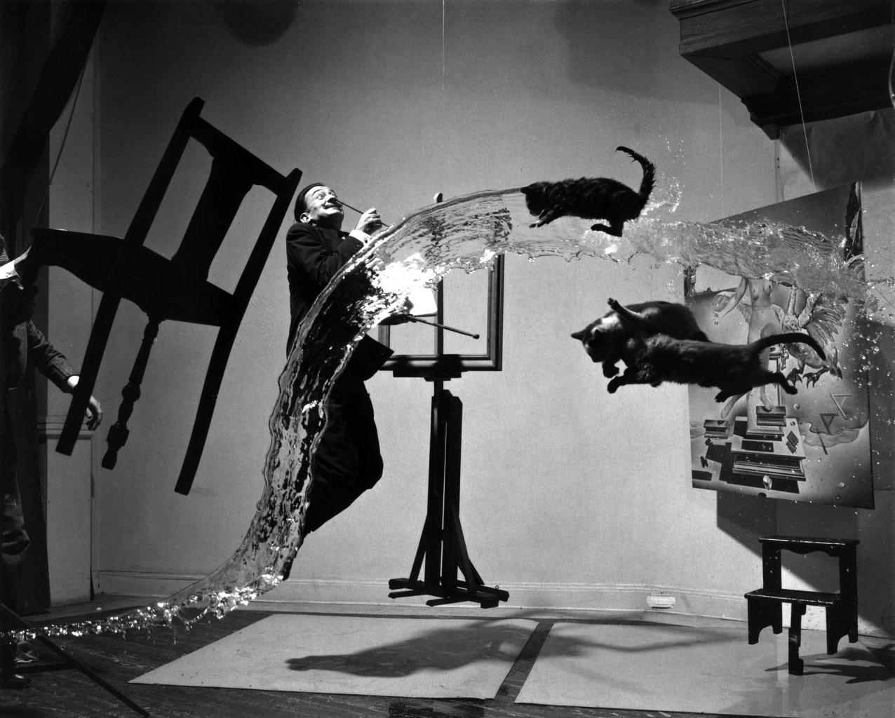 Philippe Halsman fotós egyik leghíresebb portréja, a Dalí Atomicus, Salvador Dalít ábrázolja, repülő macskákkal.
