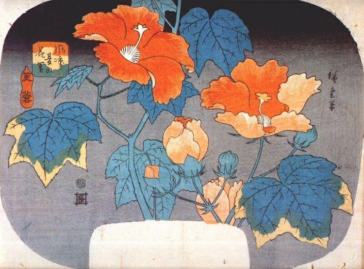 Rózsás hangulatba hozunk virágos képekkel