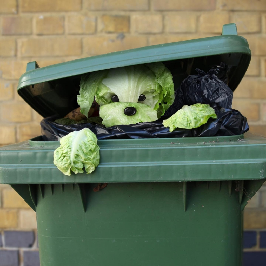 zöld kukából előmászó, kelkáposztából készült kutya