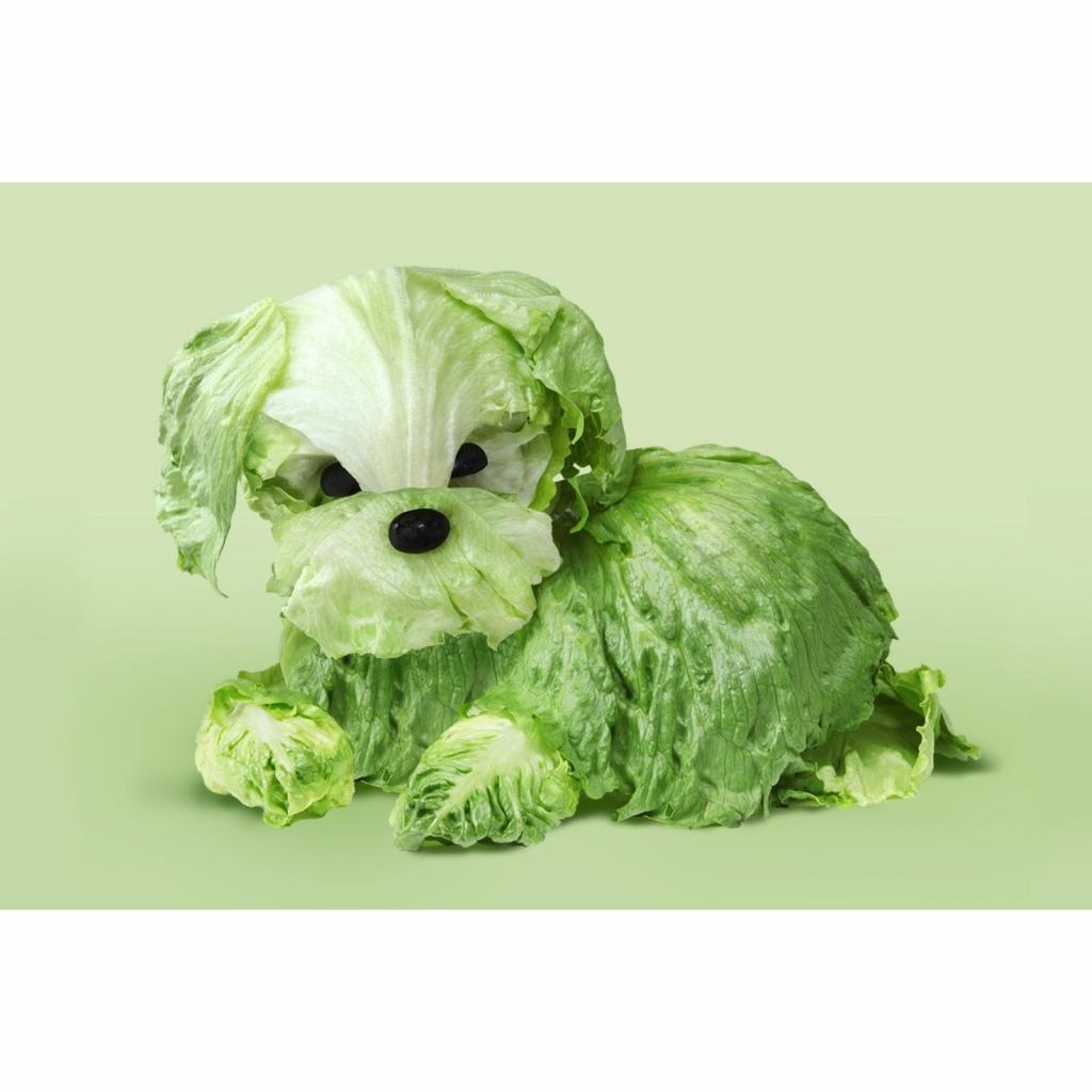 kutya figura kelkáposztából