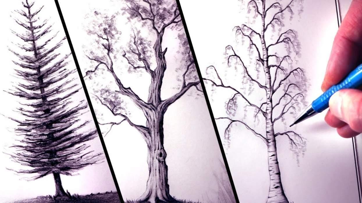 Baum-teszt - Rajzolj egy fát és tudd meg ki vagy!